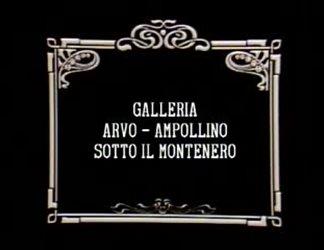 Galleria Arvo - Ampollino sotto il Montenero